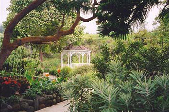 Kula Botanical Gardens Gazebo And Koi Pond